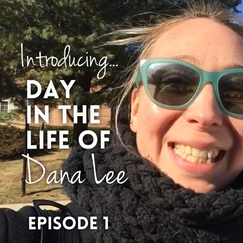 Introducing… Day In The Life of Dana Lee